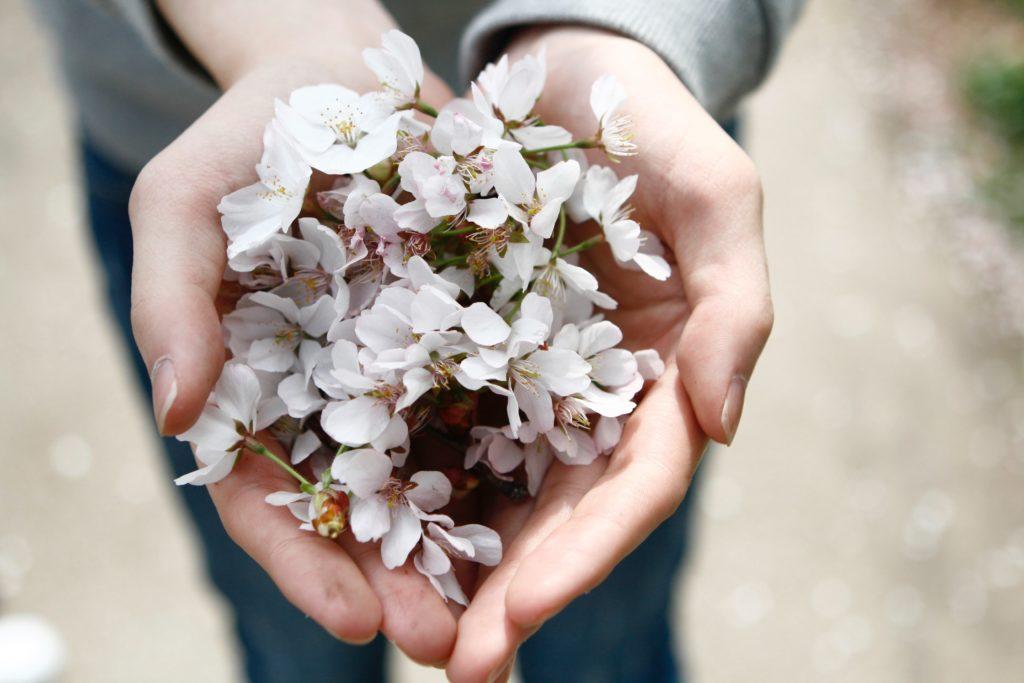 Kukkia kämmenellä